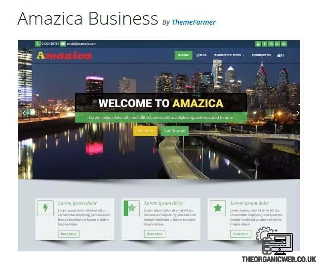 Amazica Business